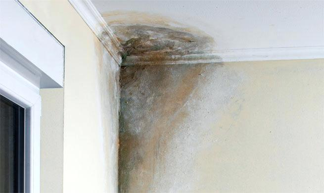 Humedades por filtracion madrid a coru a sevilla - Humedad por condensacion en paredes ...