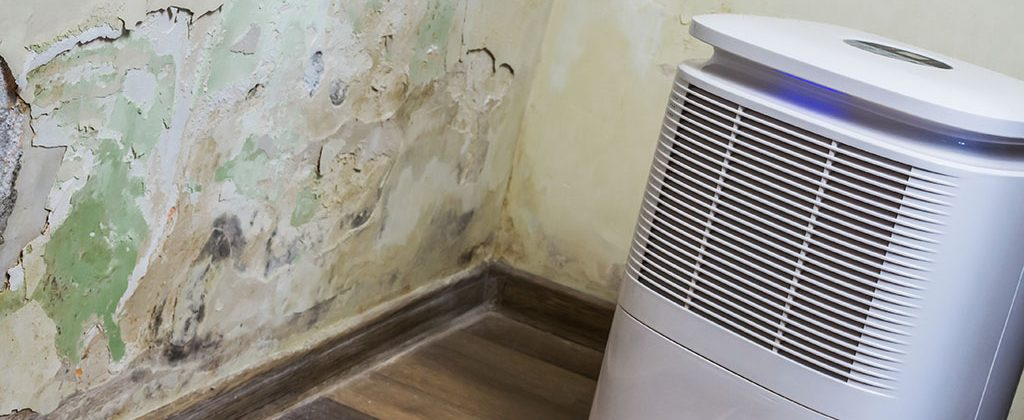 Aparato para quitar humedad en la casa