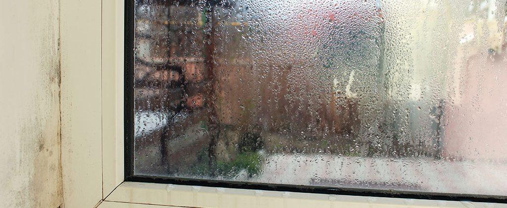 Cómo saber si hay humedad en el techo o en una pared