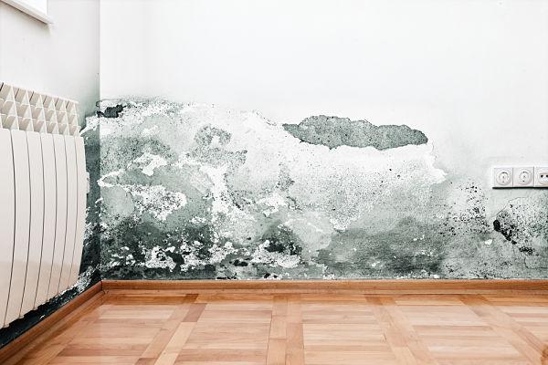 Cómo reparar humedades por condensación en Madrid de forma profesional