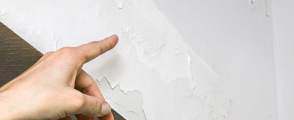 Pídenos presupuesto online para quitar la humedad de las paredes en Madrid