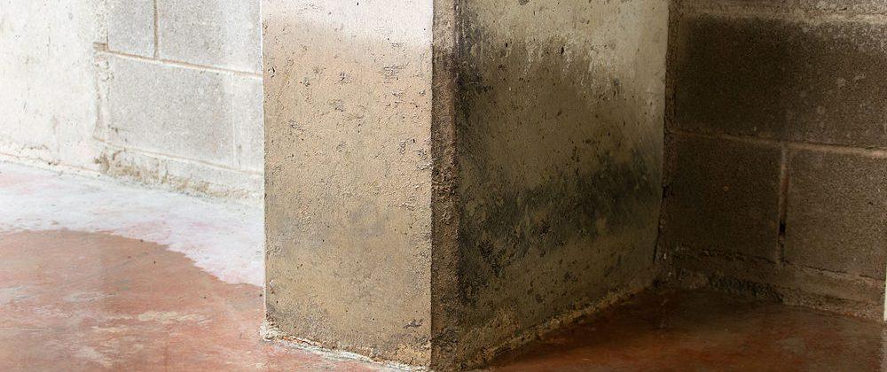 Reparación de humedades por capilaridad en Toledo al mejor precio