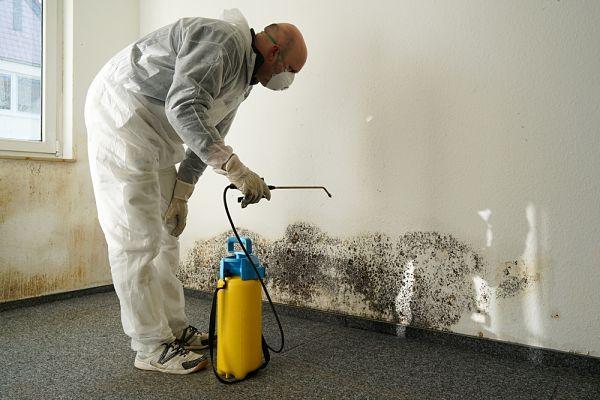 Reparación de humedades por capilaridad en Toledo