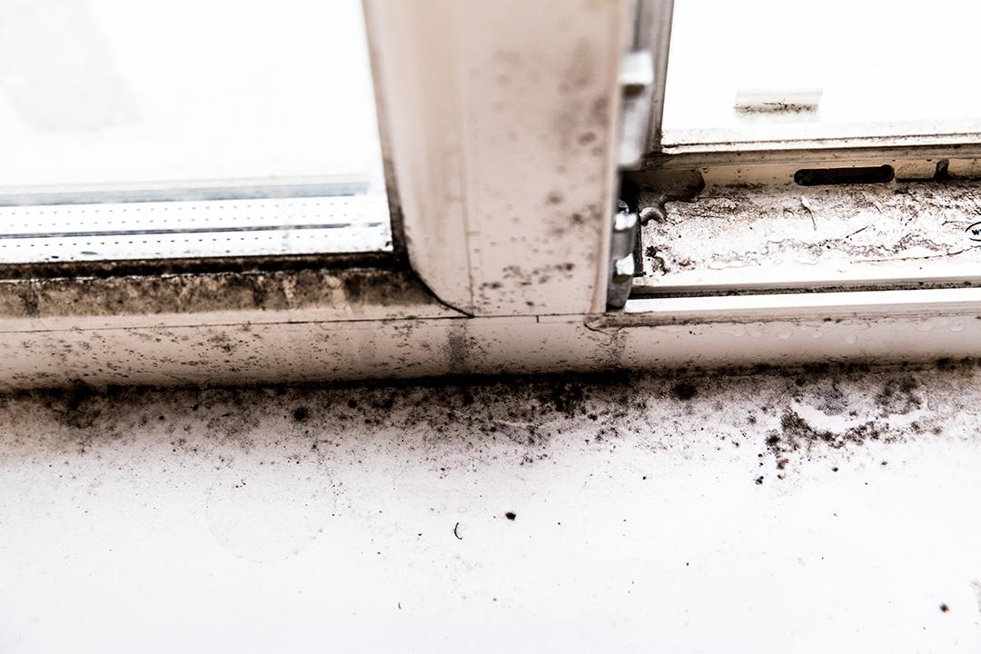 humedades por condensacion en sevilla, qué hacer