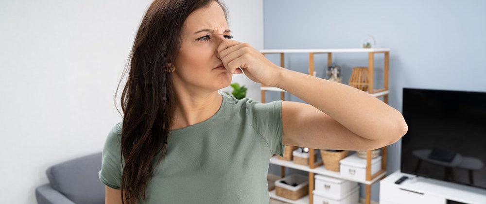 El olor a humedad hace daño