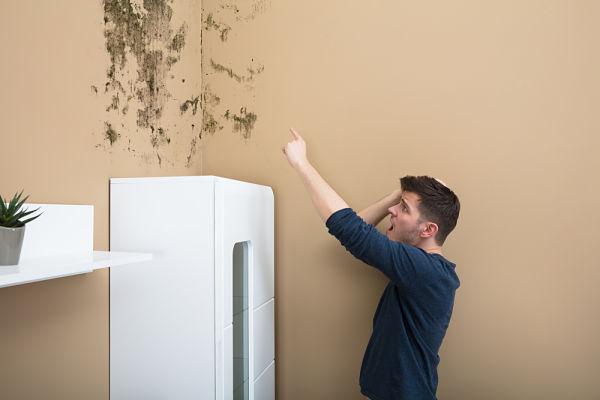 Existe una solución casera a los problemas de humedad en paredes