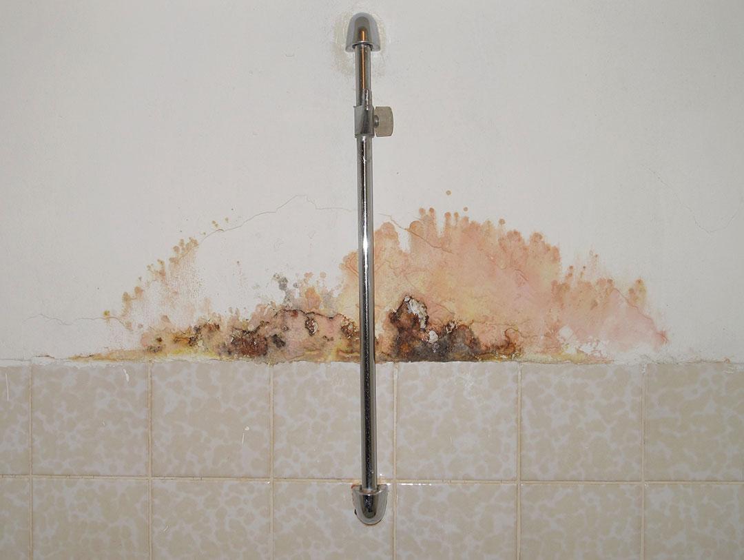 humedades en paredes interiores, confía en especialistas para su reparacion